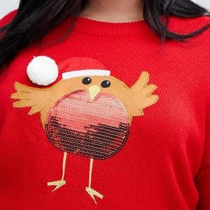 Plus-size sweater by Brave Soul Plus